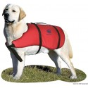 Salvagente Pet Vest 5 Kg 22.403.51 23,90 €